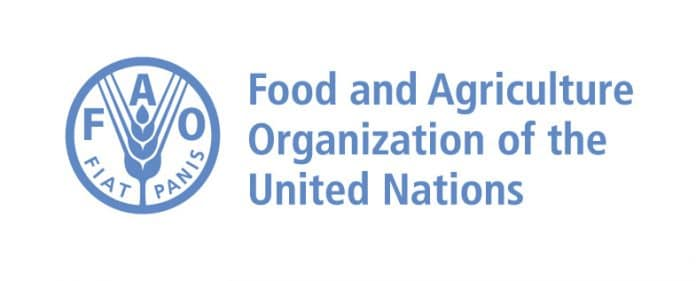 Food And Agriculture Organization Of The United Nations Internship