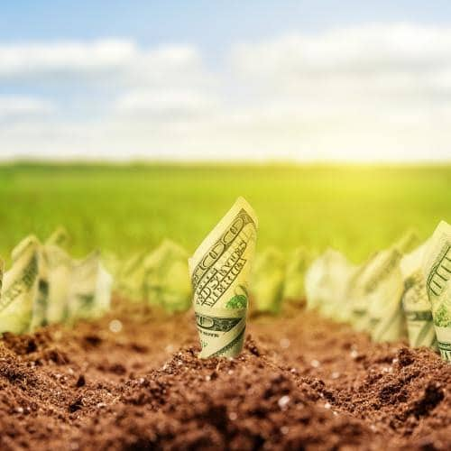Make Money From Agriculture Without Going To The Farm