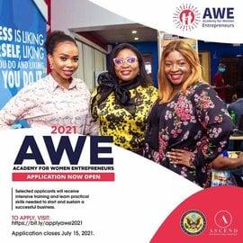 U.S Government Academy for Women Entrepreneurs (AWE) 2021 for Nigerian Women Entrepreneurs